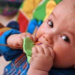 بازی با کودکان و شناسایی اسباب بازی های خطرناک