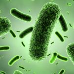 علائم و درمان عفونت بعد از زایمان چیست؟