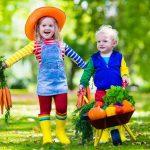 برنامه غذایی مفید و مغذی برای کودکان ۲ تا ۳ ساله