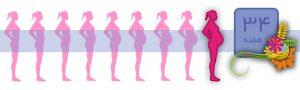 هفته سی و چهارم بارداری