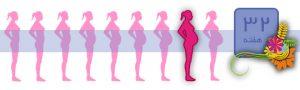 هفته سی و دو بارداری