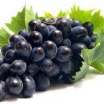 خوردن انگور در بارداری، فواید بیشمار