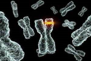 اطلاعاتی در خصوص مشاور ژنتیک برای ازدواج های فامیلی