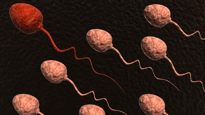 آزمایش اسپرم مردان